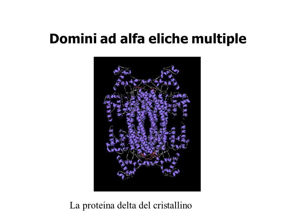 Domini ad alfa eliche multiple La proteina delta del cristallino