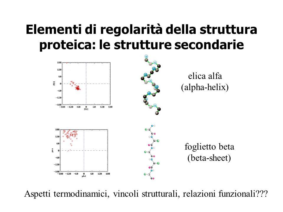 Elementi di regolarità della struttura proteica: le strutture secondarie elica alfa (alpha-helix) foglietto beta (beta-sheet) Aspetti termodinamici, v