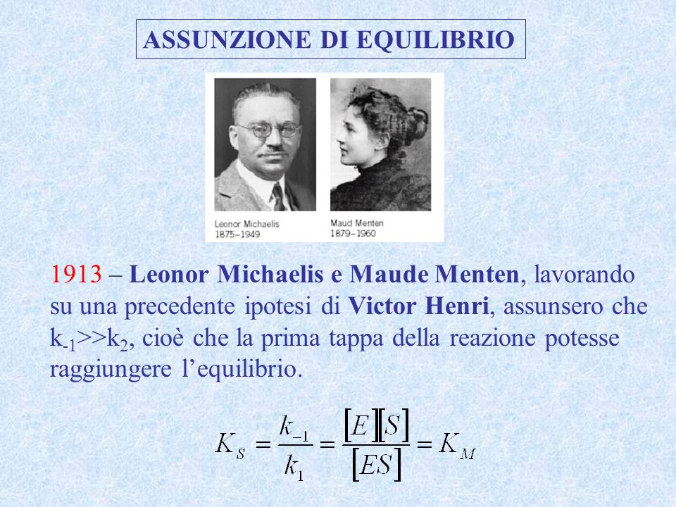ASSUNZIONE DI EQUILIBRIO 1913 – Leonor Michaelis e Maude Menten, lavorando su una precedente ipotesi di Victor Henri, assunsero che k -1 >>k 2, cioè c