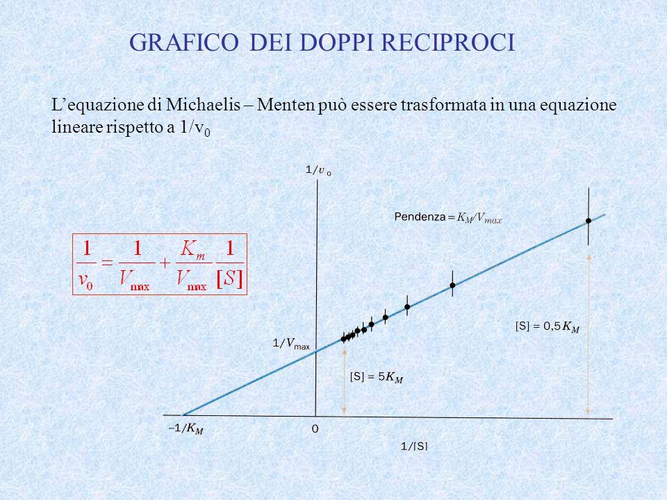 GRAFICO DEI DOPPI RECIPROCI Lequazione di Michaelis – Menten può essere trasformata in una equazione lineare rispetto a 1/v 0