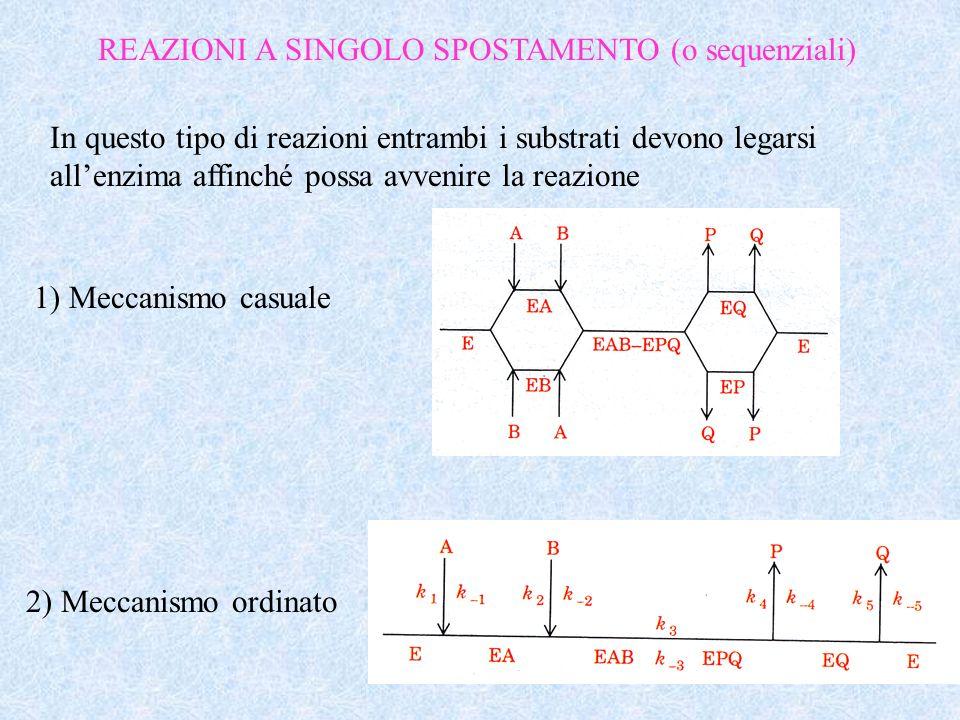 REAZIONI A SINGOLO SPOSTAMENTO (o sequenziali) In questo tipo di reazioni entrambi i substrati devono legarsi allenzima affinché possa avvenire la rea