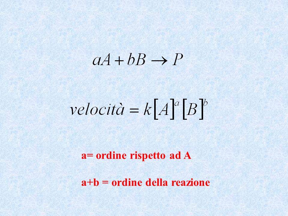 Equazione di Michaelis - Menten