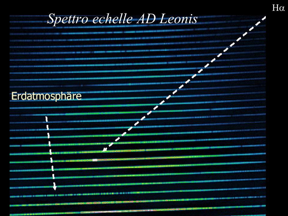 Spettro echelle AD Leonis H