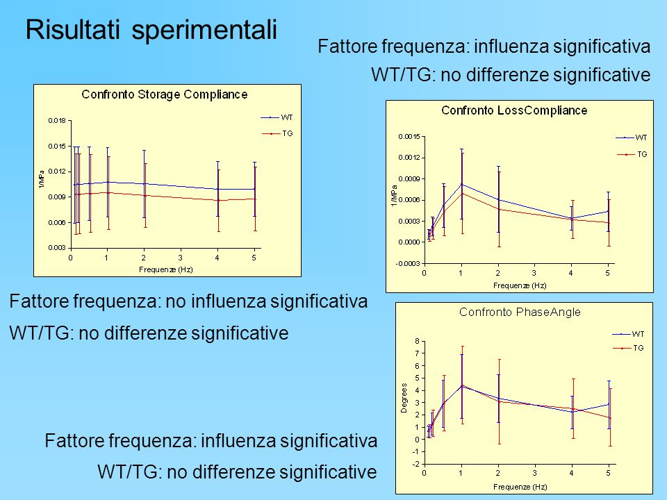 Risultati sperimentali Fattore frequenza: no influenza significativa WT/TG: no differenze significative Fattore frequenza: influenza significativa WT/TG: no differenze significative Fattore frequenza: influenza significativa WT/TG: no differenze significative