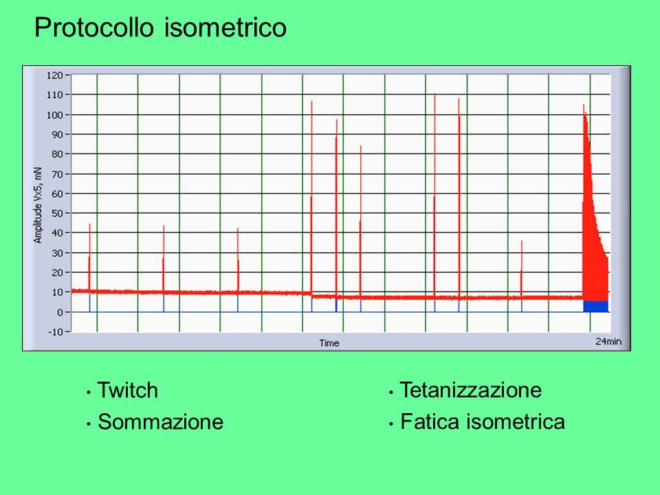 Twitch Sommazione Protocollo isometrico Tetanizzazione Fatica isometrica
