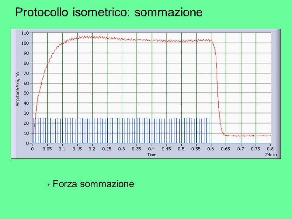 Protocollo isometrico: sommazione Forza sommazione