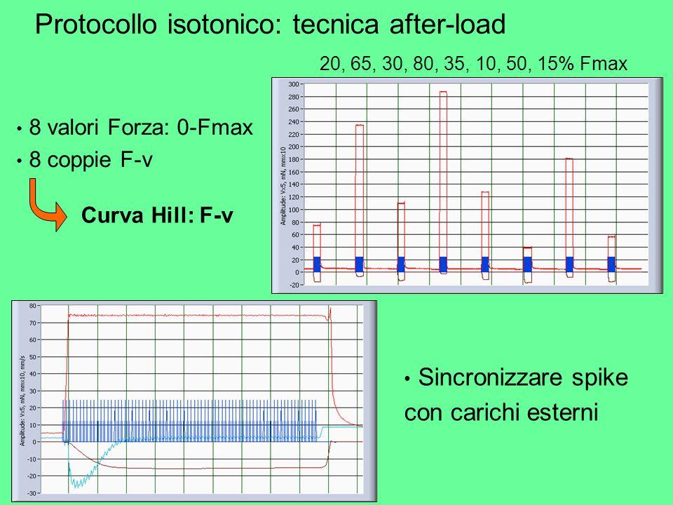 8 valori Forza: 0-Fmax 8 coppie F-v Protocollo isotonico: tecnica after-load Curva Hill: F-v 20, 65, 30, 80, 35, 10, 50, 15% Fmax Sincronizzare spike