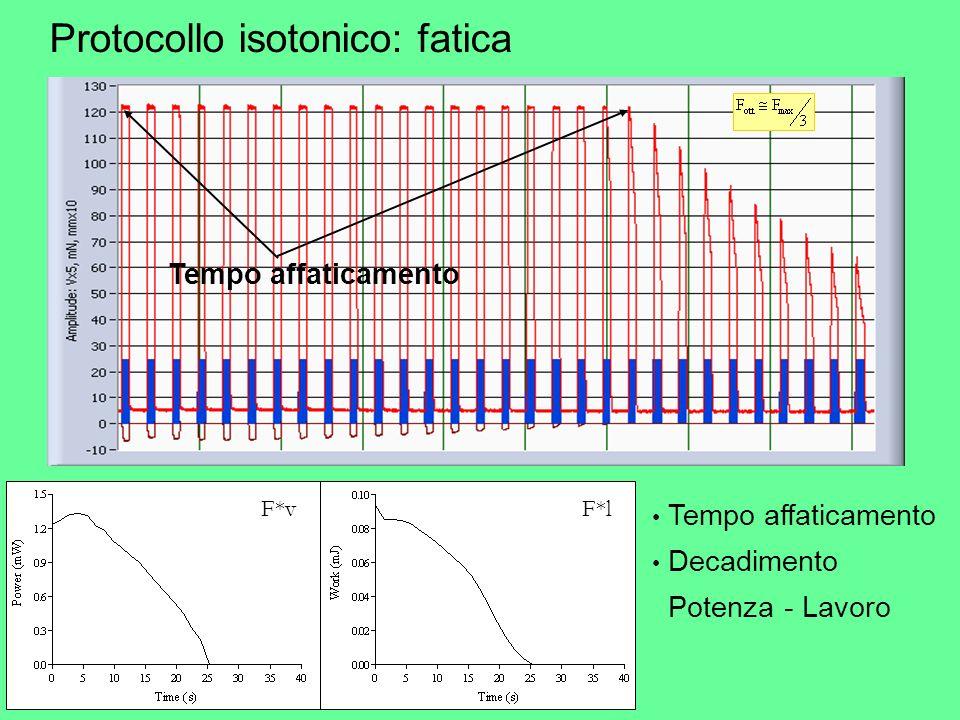Protocollo isotonico: fatica Tempo affaticamento Decadimento Potenza - Lavoro F*vF*l