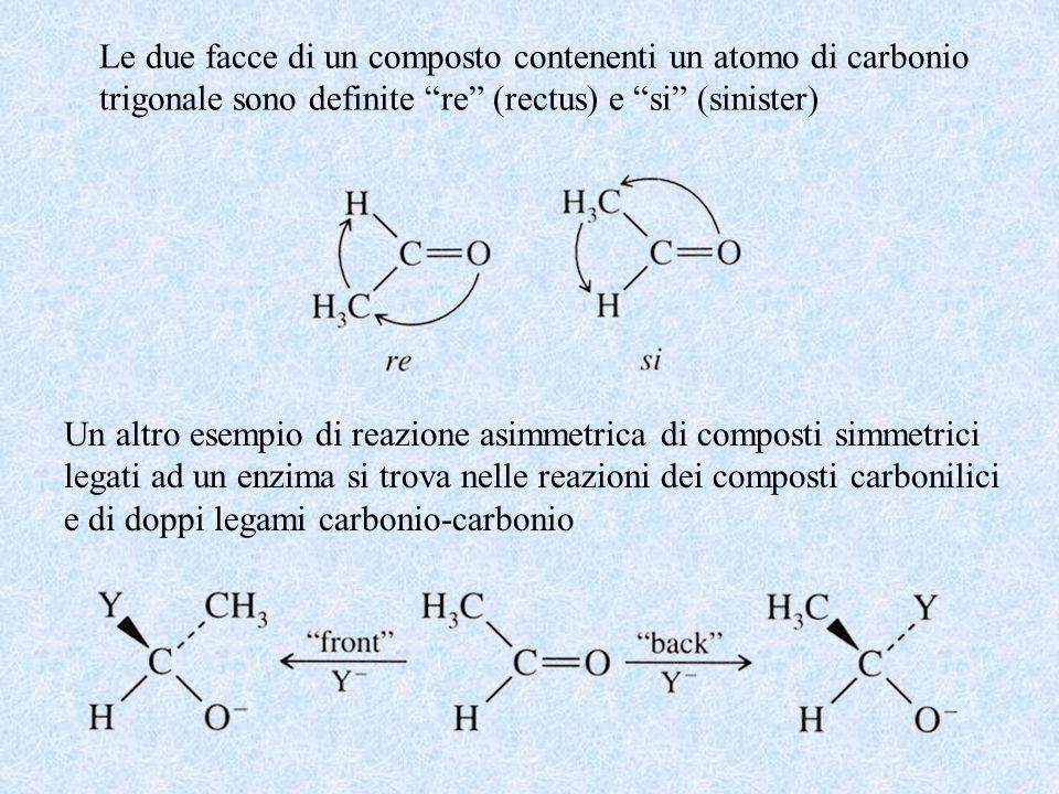 Le due facce di un composto contenenti un atomo di carbonio trigonale sono definite re (rectus) e si (sinister) Un altro esempio di reazione asimmetri