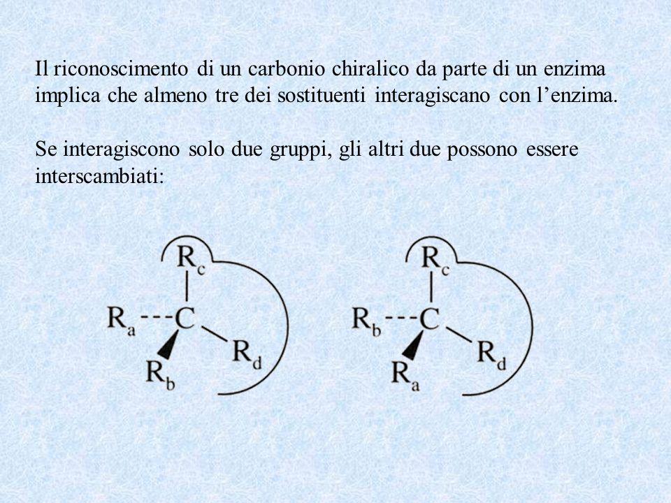 Il riconoscimento di un carbonio chiralico da parte di un enzima implica che almeno tre dei sostituenti interagiscano con lenzima. Se interagiscono so