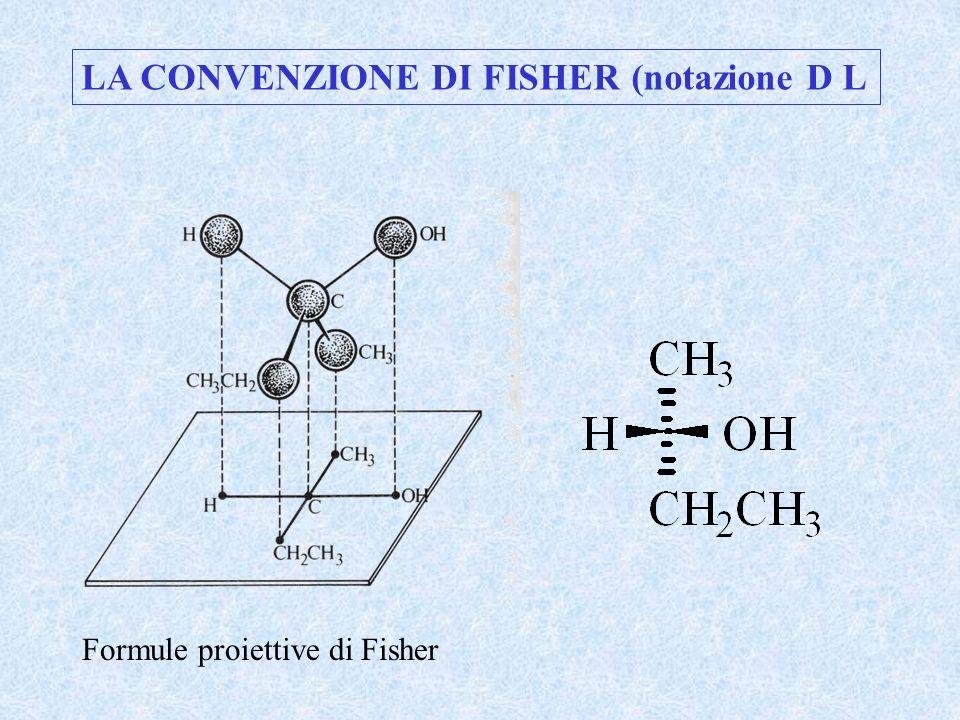Formule proiettive di Fisher LA CONVENZIONE DI FISHER (notazione D L