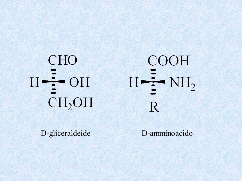 D-gliceraldeideD-amminoacido