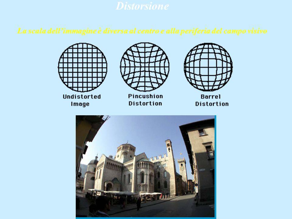 Distorsione La scala dellimmagine è diversa al centro e alla periferia del campo visivo