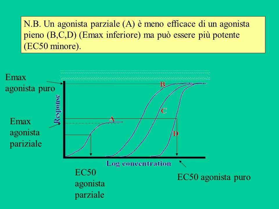 N.B. Un agonista parziale (A) è meno efficace di un agonista pieno (B,C,D) (Emax inferiore) ma può essere più potente (EC50 minore). Emax agonista pur