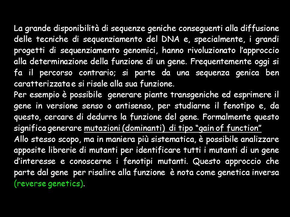 La grande disponibilità di sequenze geniche conseguenti alla diffusione delle tecniche di sequenziamento del DNA e, specialmente, i grandi progetti di