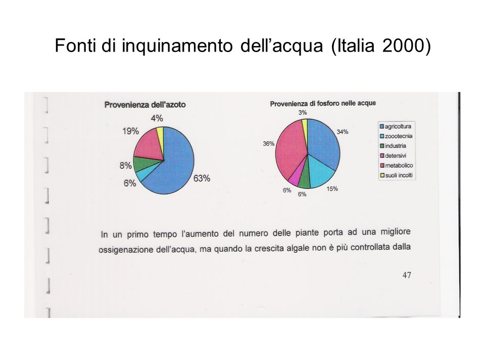 Fonti di inquinamento dellacqua (Italia 2000)