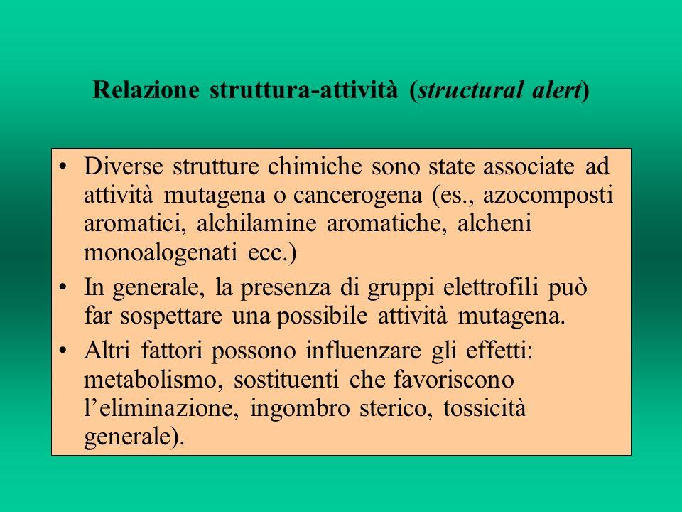 Relazione struttura-attività (structural alert) Diverse strutture chimiche sono state associate ad attività mutagena o cancerogena (es., azocomposti a