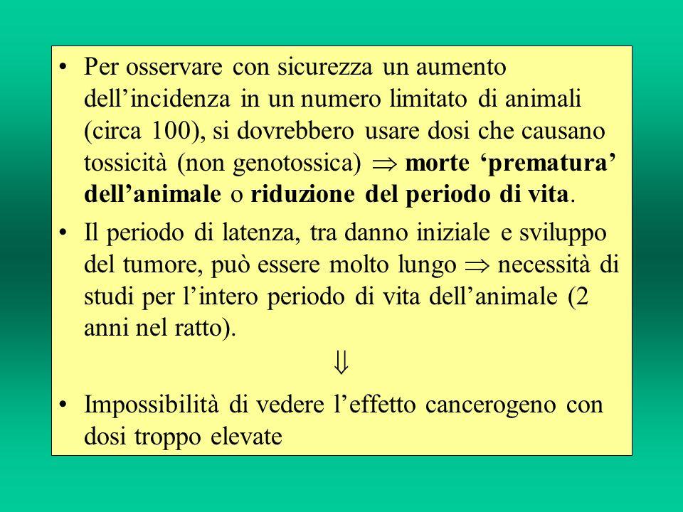 Per osservare con sicurezza un aumento dellincidenza in un numero limitato di animali (circa 100), si dovrebbero usare dosi che causano tossicità (non