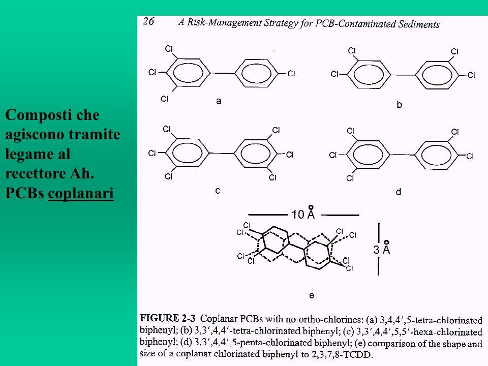 Composti che agiscono tramite legame al recettore Ah. PCBs coplanari
