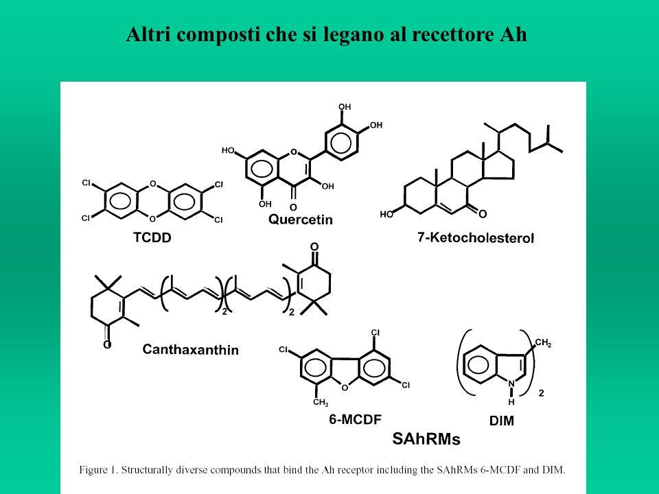 Altri composti che si legano al recettore Ah