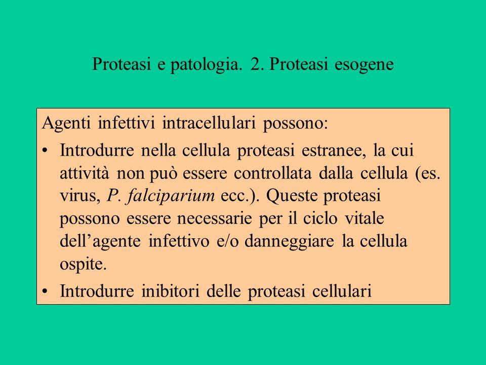 Proteasi e patologia. 2. Proteasi esogene Agenti infettivi intracellulari possono: Introdurre nella cellula proteasi estranee, la cui attività non può