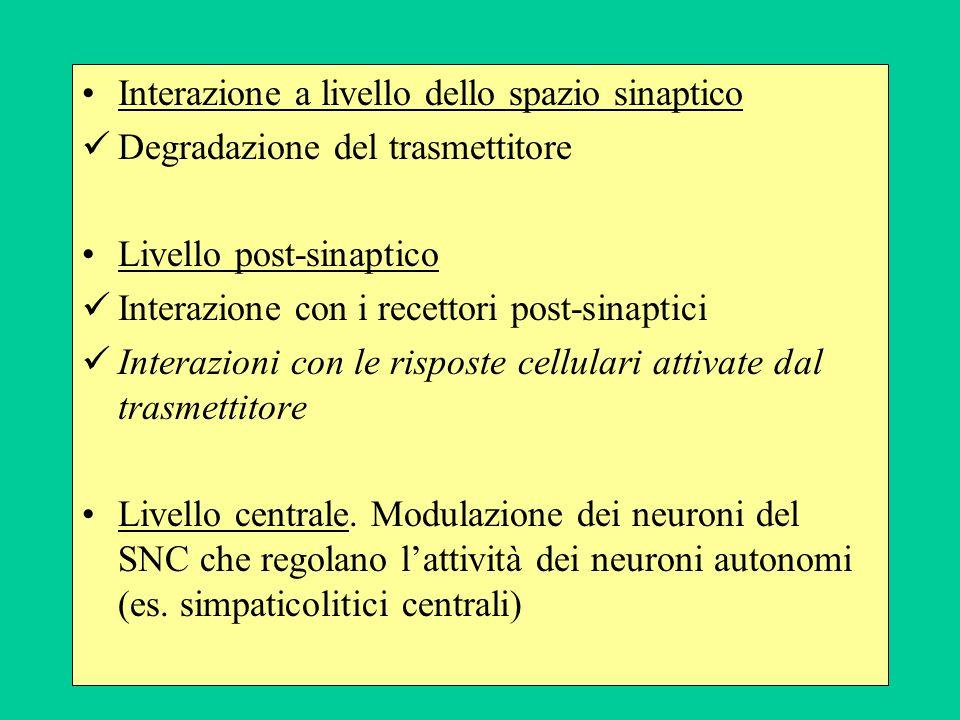 Interazione a livello dello spazio sinaptico Degradazione del trasmettitore Livello post-sinaptico Interazione con i recettori post-sinaptici Interazi