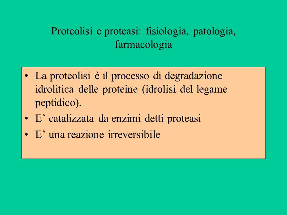 Proteolisi e proteasi: fisiologia, patologia, farmacologia La proteolisi è il processo di degradazione idrolitica delle proteine (idrolisi del legame
