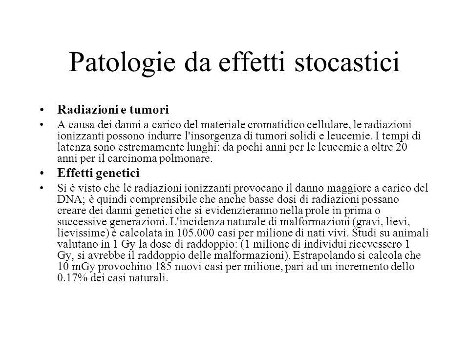 Patologie da effetti stocastici Radiazioni e tumori A causa dei danni a carico del materiale cromatidico cellulare, le radiazioni ionizzanti possono i
