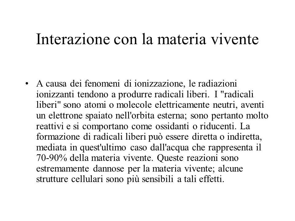 Interazione con la materia vivente A causa dei fenomeni di ionizzazione, le radiazioni ionizzanti tendono a produrre radicali liberi. I