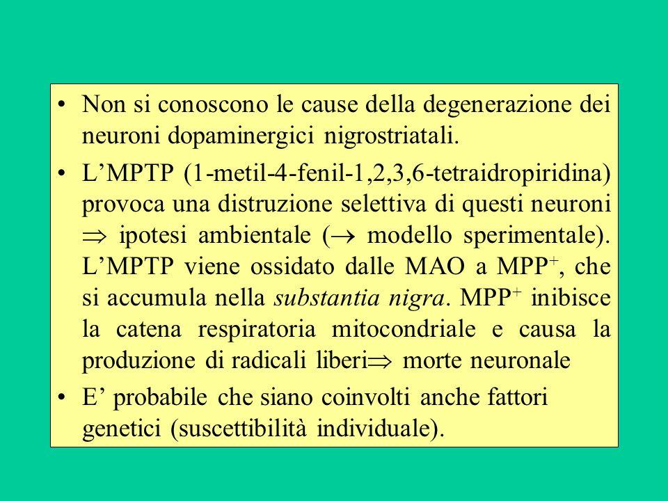 Non si conoscono le cause della degenerazione dei neuroni dopaminergici nigrostriatali. LMPTP (1-metil-4-fenil-1,2,3,6-tetraidropiridina) provoca una