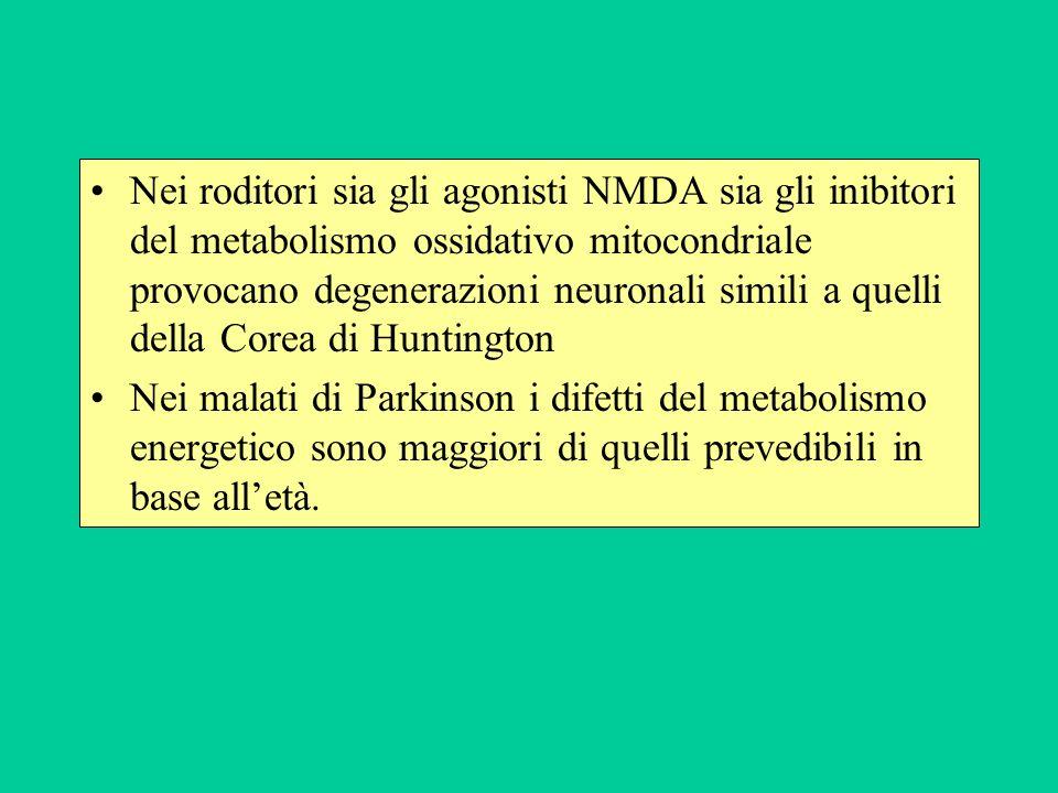 Nei roditori sia gli agonisti NMDA sia gli inibitori del metabolismo ossidativo mitocondriale provocano degenerazioni neuronali simili a quelli della