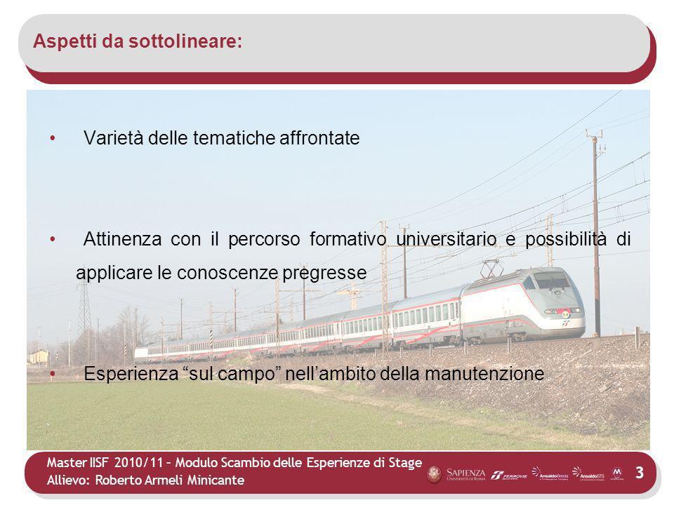 Master IISF 2010/11 – Modulo Scambio delle Esperienze di Stage Allievo: Roberto Armeli Minicante Aspetti da sottolineare: 3 Varietà delle tematiche af