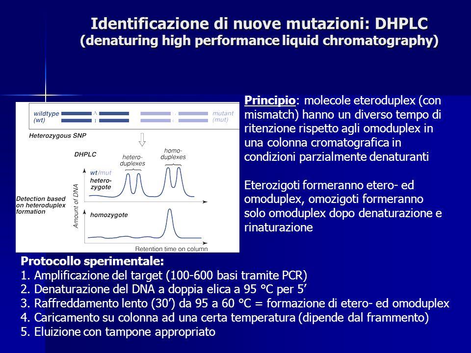 Identificazione di nuove mutazioni: DHPLC (denaturing high performance liquid chromatography) Principio: molecole eteroduplex (con mismatch) hanno un diverso tempo di ritenzione rispetto agli omoduplex in una colonna cromatografica in condizioni parzialmente denaturanti Eterozigoti formeranno etero- ed omoduplex, omozigoti formeranno solo omoduplex dopo denaturazione e rinaturazione Protocollo sperimentale: 1.