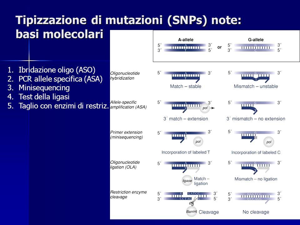 Tipizzazione di mutazioni (SNPs) note: basi molecolari 1.Ibridazione oligo (ASO) 2.PCR allele specifica (ASA) 3.Minisequencing 4.Test della ligasi 5.Taglio con enzimi di restriz.