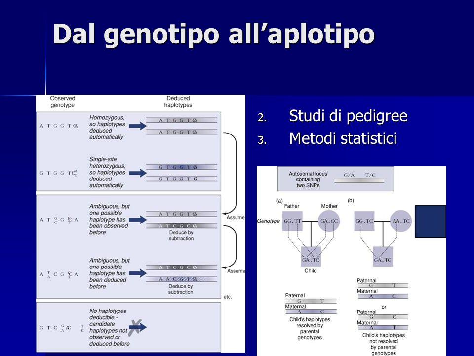 Dal genotipo allaplotipo 2. Studi di pedigree 3. Metodi statistici