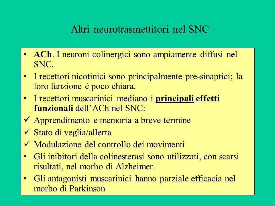 Altri neurotrasmettitori nel SNC ACh.I neuroni colinergici sono ampiamente diffusi nel SNC.