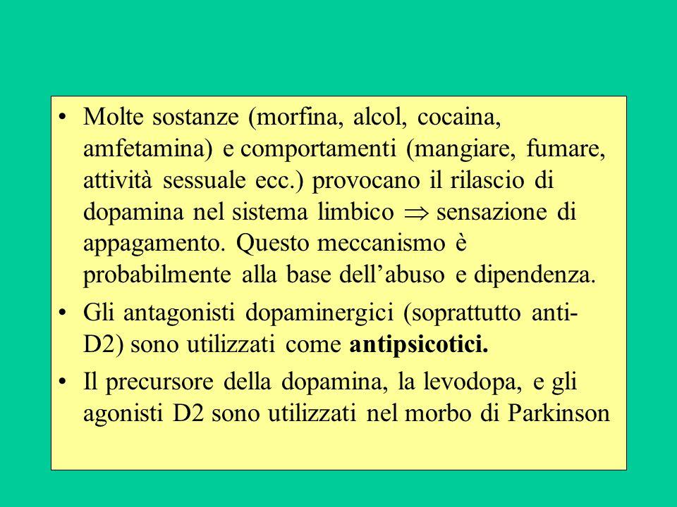 Molte sostanze (morfina, alcol, cocaina, amfetamina) e comportamenti (mangiare, fumare, attività sessuale ecc.) provocano il rilascio di dopamina nel sistema limbico sensazione di appagamento.