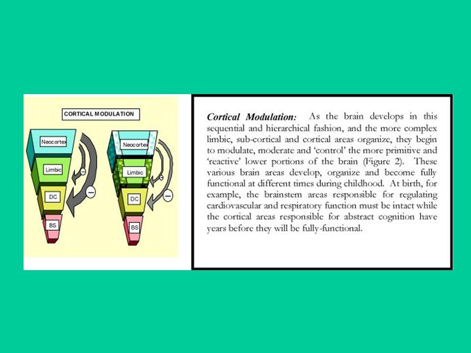Aminoacidi eccitatori Il più diffuso nel SNC è lacido L-glutammico (glutammato); meno importanti sono lacido aspartico e lomocisteitato.