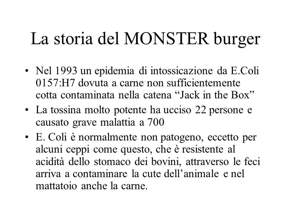 La storia del MONSTER burger Nel 1993 un epidemia di intossicazione da E.Coli 0157:H7 dovuta a carne non sufficientemente cotta contaminata nella catena Jack in the Box La tossina molto potente ha ucciso 22 persone e causato grave malattia a 700 E.