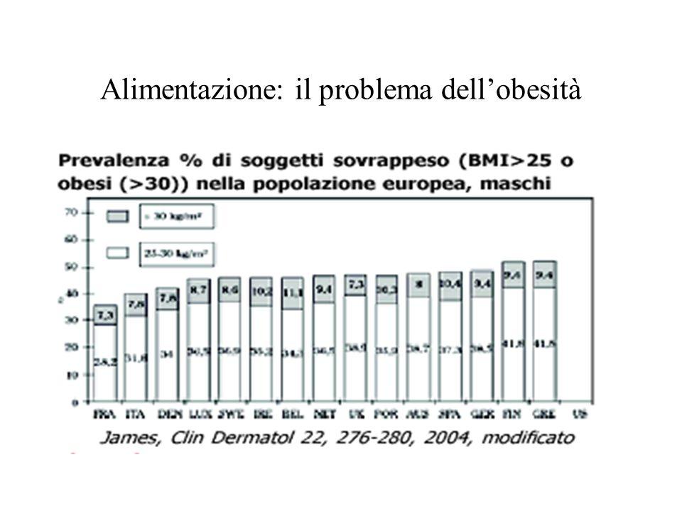 Alimentazione: il problema dellobesità