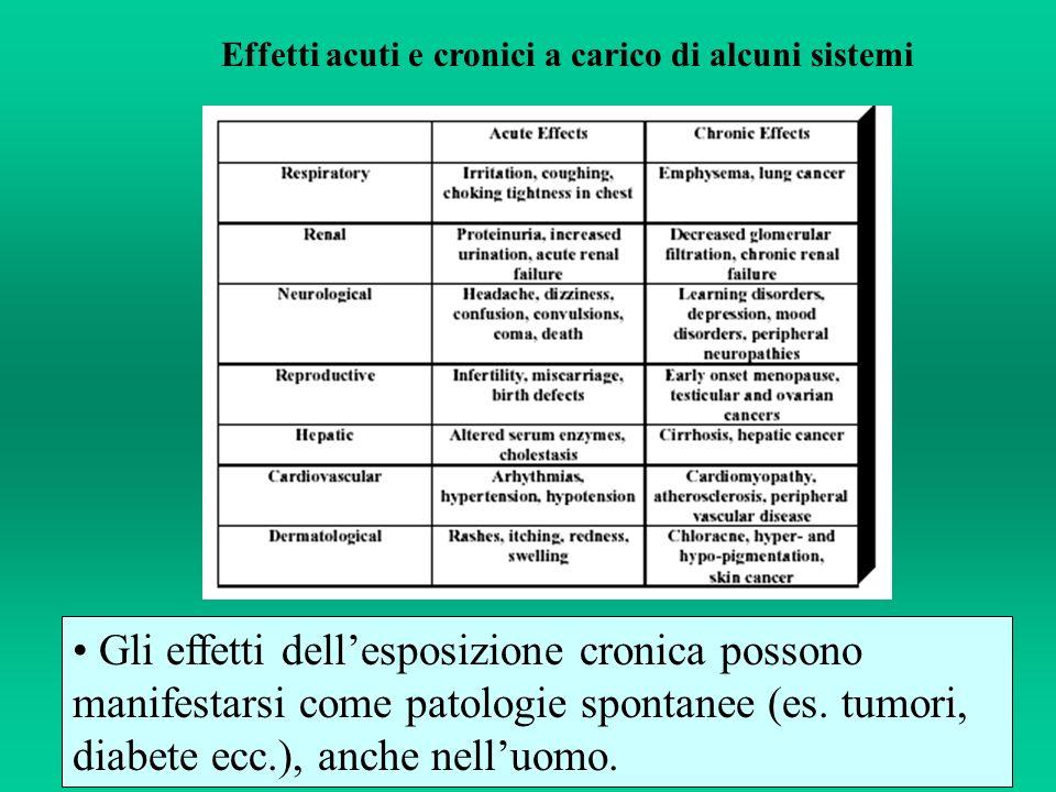 Effetti acuti e cronici a carico di alcuni sistemi Gli effetti dellesposizione cronica possono manifestarsi come patologie spontanee (es. tumori, diab
