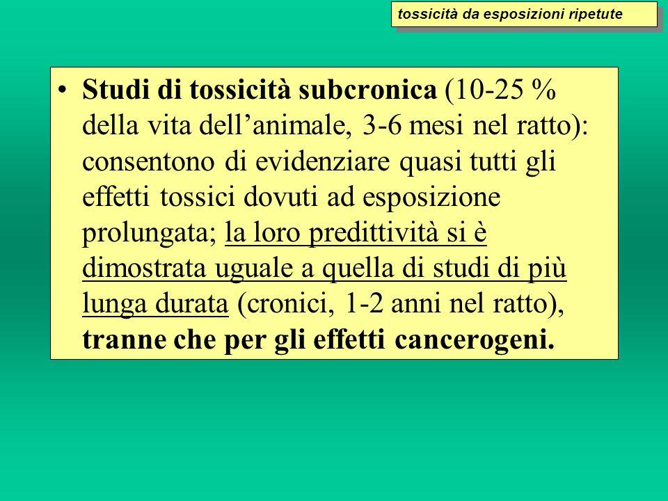 Studi di tossicità subcronica (10-25 % della vita dellanimale, 3-6 mesi nel ratto): consentono di evidenziare quasi tutti gli effetti tossici dovuti a