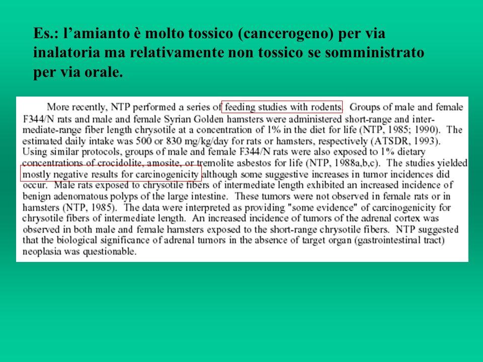 Es.: lamianto è molto tossico (cancerogeno) per via inalatoria ma relativamente non tossico se somministrato per via orale.