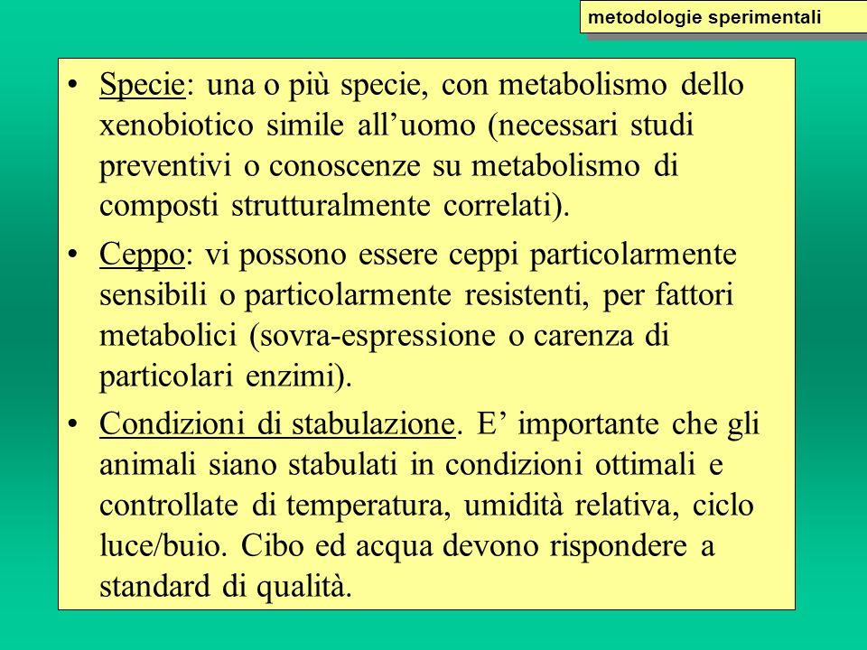 Specie: una o più specie, con metabolismo dello xenobiotico simile alluomo (necessari studi preventivi o conoscenze su metabolismo di composti struttu
