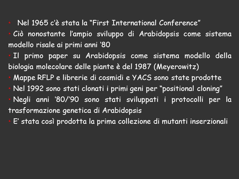 Nel 1965 cè stata la First International Conference Ciò nonostante lampio sviluppo di Arabidopsis come sistema modello risale ai primi anni 80 Il prim