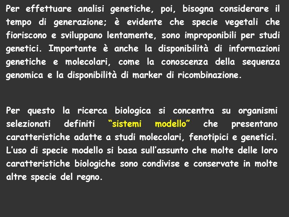 Per questo la ricerca biologica si concentra su organismi selezionati definiti sistemi modello che presentano caratteristiche adatte a studi molecolar