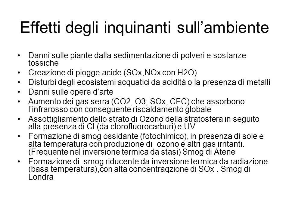 Effetti degli inquinanti sullambiente Danni sulle piante dalla sedimentazione di polveri e sostanze tossiche Creazione di piogge acide (SOx,NOx con H2