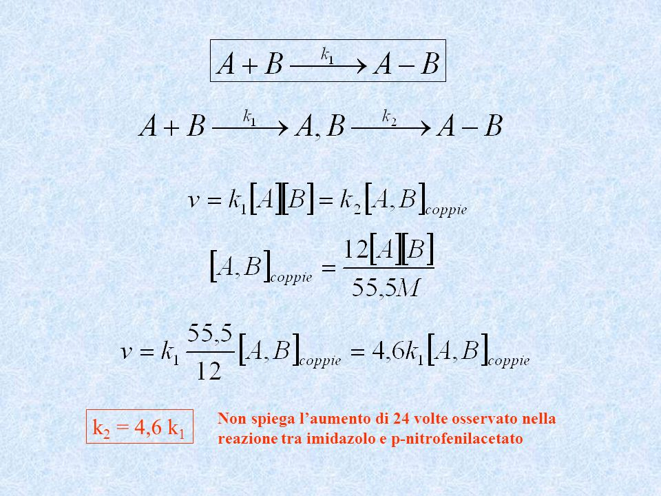 k 2 = 4,6 k 1 Non spiega laumento di 24 volte osservato nella reazione tra imidazolo e p-nitrofenilacetato