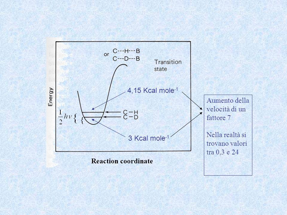 4,15 Kcal mole -1 3 Kcal mole -1 Aumento della velocità di un fattore 7 Nella realtà si trovano valori tra 0,3 e 24 Reaction coordinate
