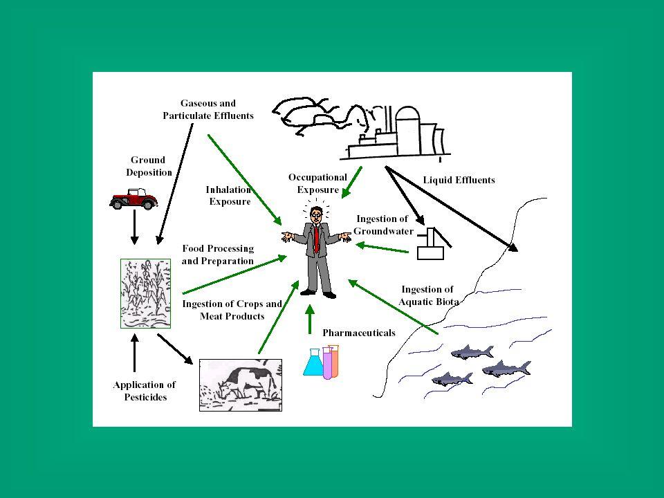 Sostanze potenzialmente tossiche, studi di tossicità, decisioni regolatorie E stato stimato nel mondo vengono utilizzati circa 100.000 composti chimici.